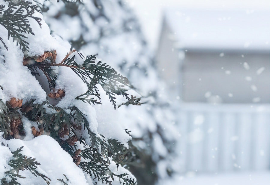 Should You Buy a House in the Winter?